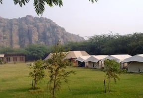 Camp Wild at Aravali Valley