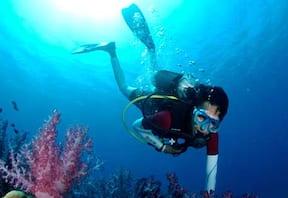 Discover Scuba at Netrani Island