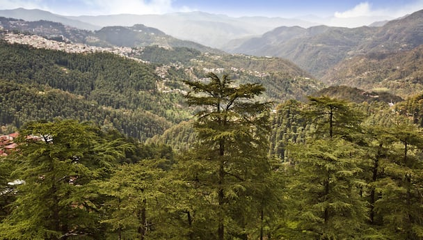 Hills of Himachal Pradesh in 7 Days with Flight