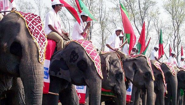 Assam Wildlife Adventure