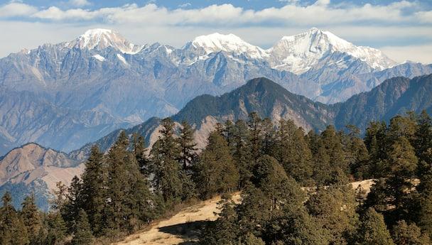 The Best Of Shimla & Manali