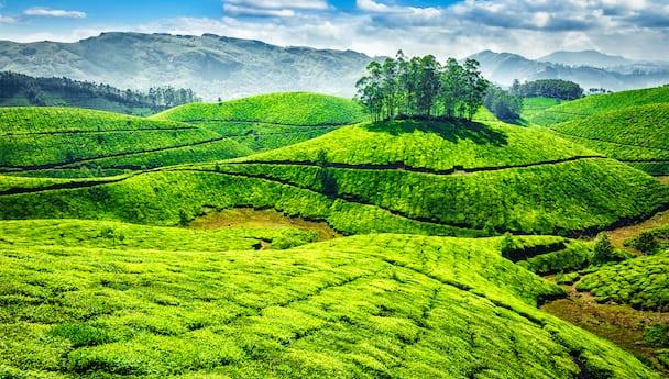 Beautiful Tamil Nadu Deluxe
