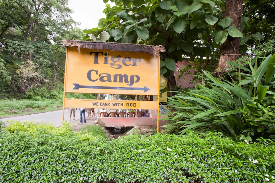 Tiger Camp, none, Tiger Camp