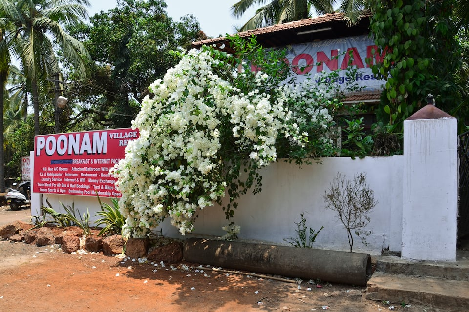 Poonam Village Resort, Anjuna, Poonam Village Resort