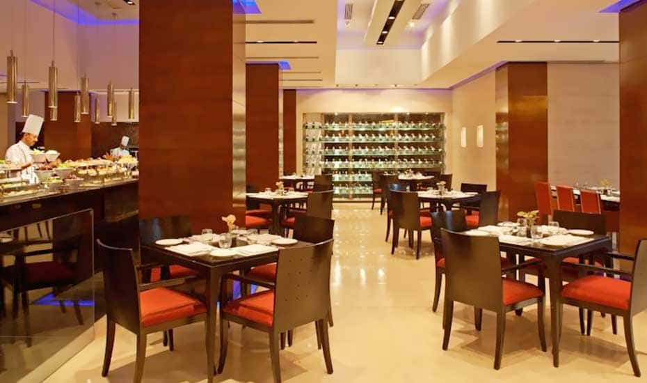Radisson Blu Plaza Delhi Airport, Airport Zone, Radisson Blu Plaza Delhi Airport