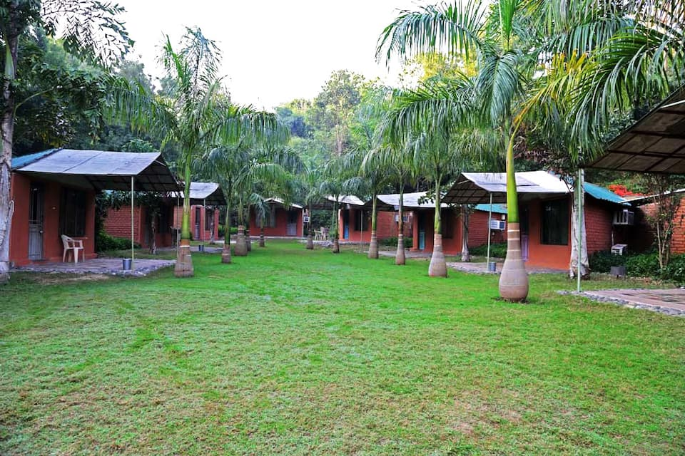 ORSANG CAMP, none, ORSANG CAMP