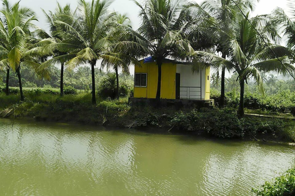 OM Lake Resort, Arambol, OM Lake Resort