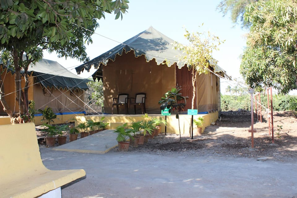 Gir Jungle Lodge, Sasan Junagadh Road, Gir Jungle Lodge