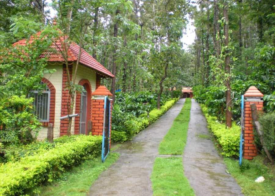 Mountain Mist Homestay, Pulpally, TG Stays Pulpally