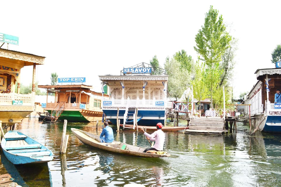 Savoy Group of Houseboat, Dal Lake, Savoy Group of Houseboat