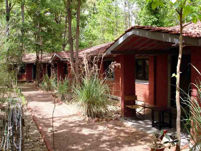 Kanha Jungle Lodge, Mukki, Kanha Jungle Lodge