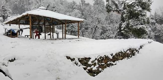 Snow Trails Camp, Kufri Chail Road, Snow Trails Camp