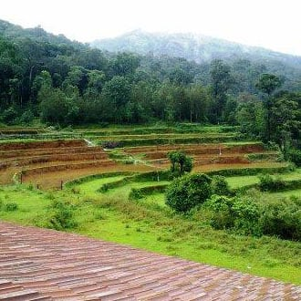 Valley Dew New, Madikeri, Valley Dew New