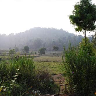 Paddy View Home Stay, Murnad, Paddy View Home Stay