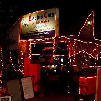 Electric Cats, Calangute, Electric Cats