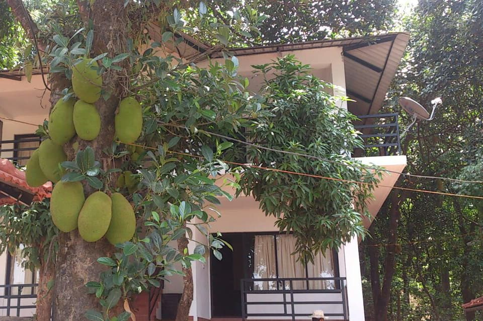 Leisure Vacations Coorg Heights Resort, Madikeri, Leisure Vacations Coorg Heights Resort