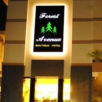 Hotel Forest Avenue, Malsi, Hotel Forest Avenue