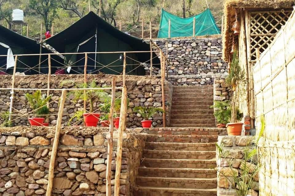 Cradle Of Life Camp, Shivpuri, Cradle Of Life Camp