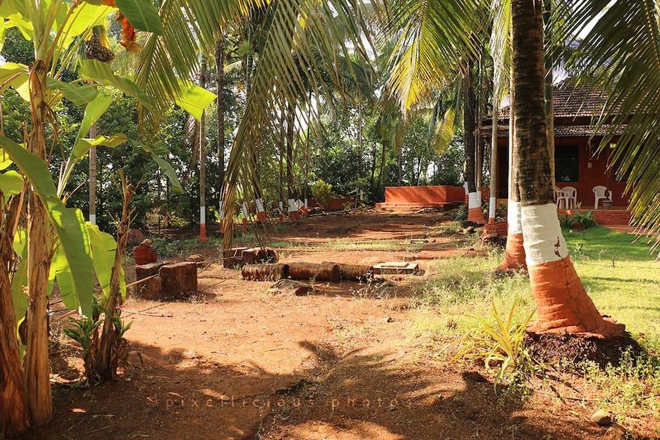 Majhya Mamacha Gaon, none, Majhya Mamacha Gaon