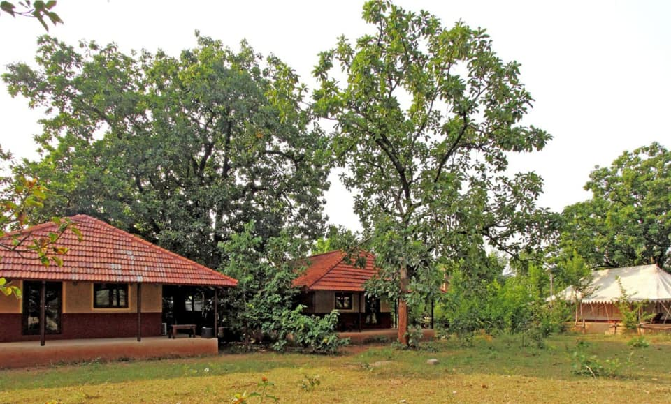 Monsoon Forest (Bandhavgarh), Village Tala, Monsoon Forest (Bandhavgarh)