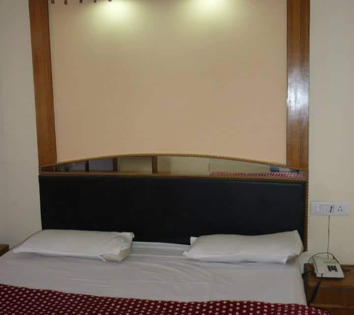 Hotel Yamuna Regency, Dudhli, Hotel Yamuna Regency