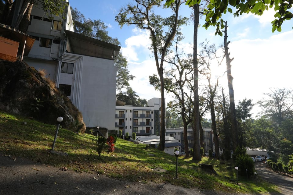 Munnar Black Forest, Kallar, Munnar Black Forest