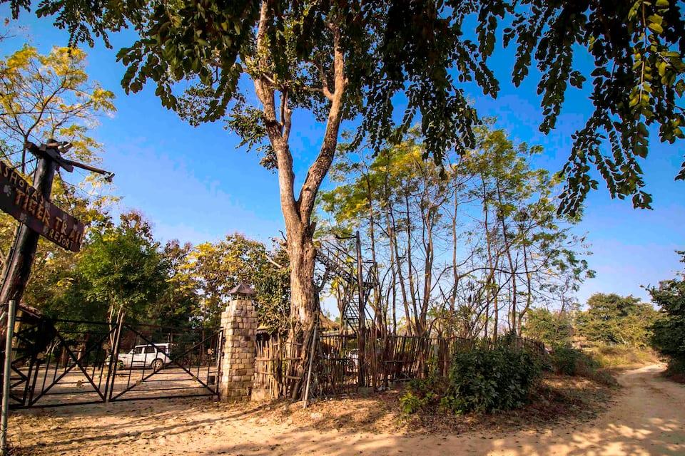 Ashoka's Tiger Trail, Dhela, Ashoka's Tiger Trail
