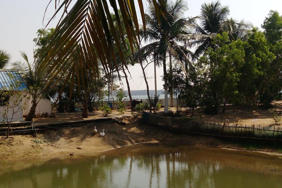 Eco-Cottage Chilika Island Resort, Satapada, Eco-Cottage Chilika Island Resort