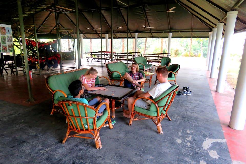 The Hornbill Camp, Munnar Thekkady Highway, The Hornbill Camp