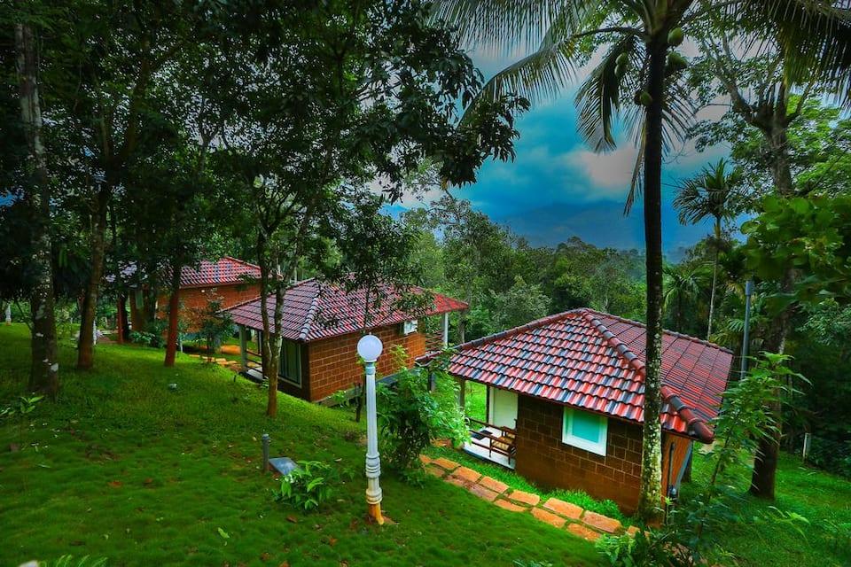 Wayanad Ranches Resorts, Meppadi, Wayanad Ranches Resorts