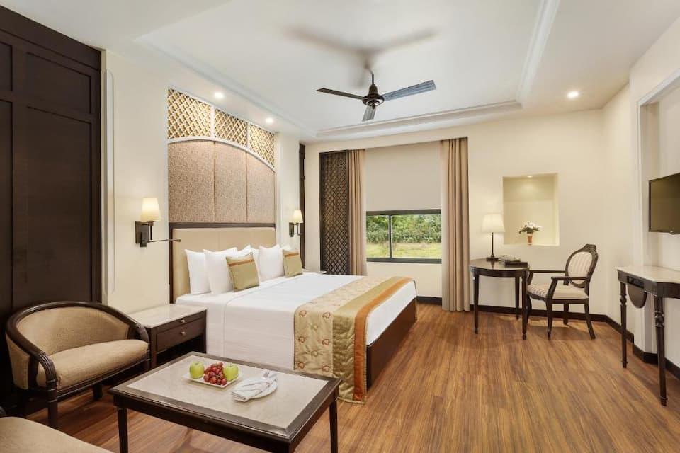 Suite Room - Double
