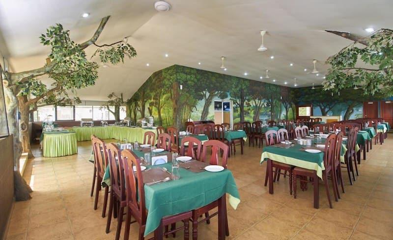 Tea Castle Resort, Chithirapuram, Tea Castle Resort