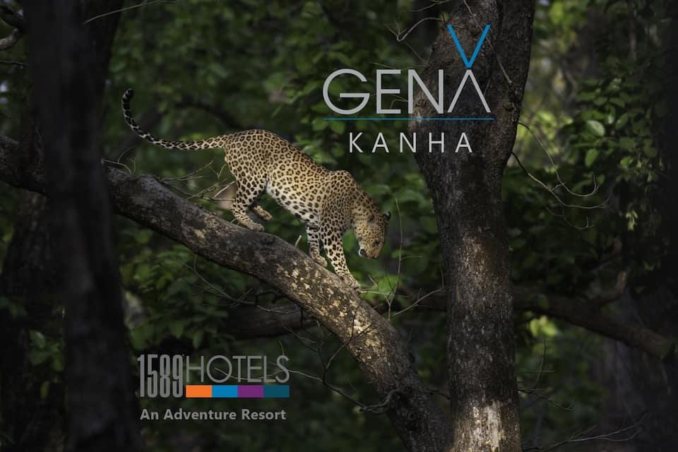 Prestige Nature's Nest, , GenX Kanha By 1589 Hotels