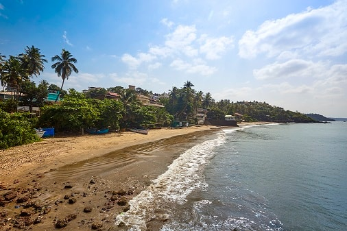 The Hawaii Comforts, Panjim, The Hawaii Comforts