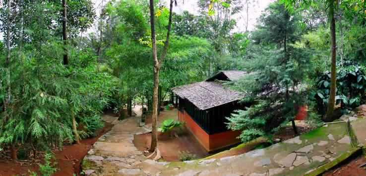 Soochipara Resort, Meppadi, Soochipara Resort
