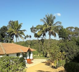 Hotel Green Village Homestay
