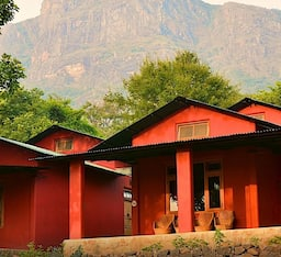 Hotel Jungle Retreat Resort