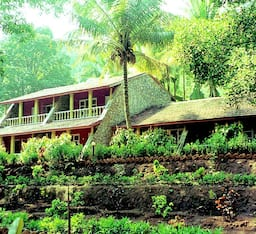 Hotel Bison River Resort