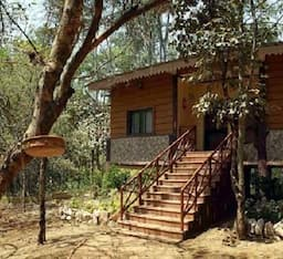 Hotel Jungle Resort