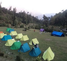 Hotel Jungle Camp