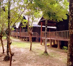 Hotel The Hornbill Camp