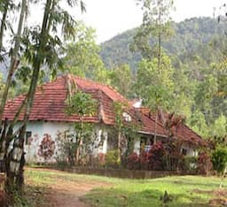 Hotel The Green Path Eco- Trail