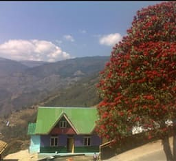 Hotel Magnolia Village Home Stay