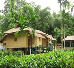 Hotel Nature-Hunt Eco Camp