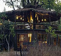 Hotel Tree House