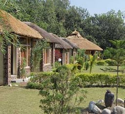 Hotel Jungle Paradise Retreat