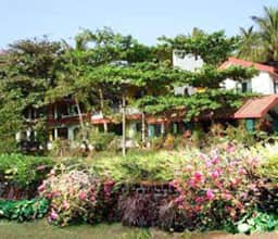 Hotel Oshin Apartment