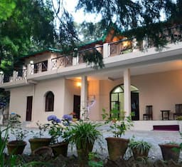 Hotel The Camphor Tree-Pura Stays