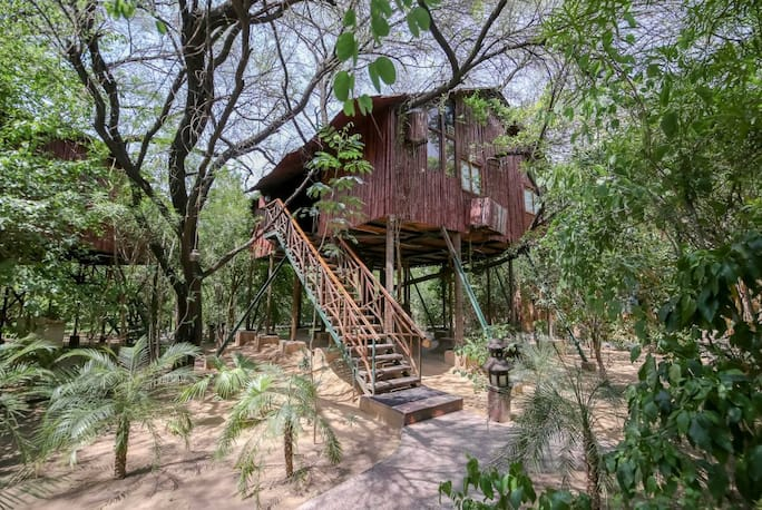 tree house jaipur. the tree house resort jaipur