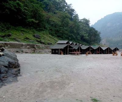 Ganga River Tour (Sapera Camp),Rishikesh